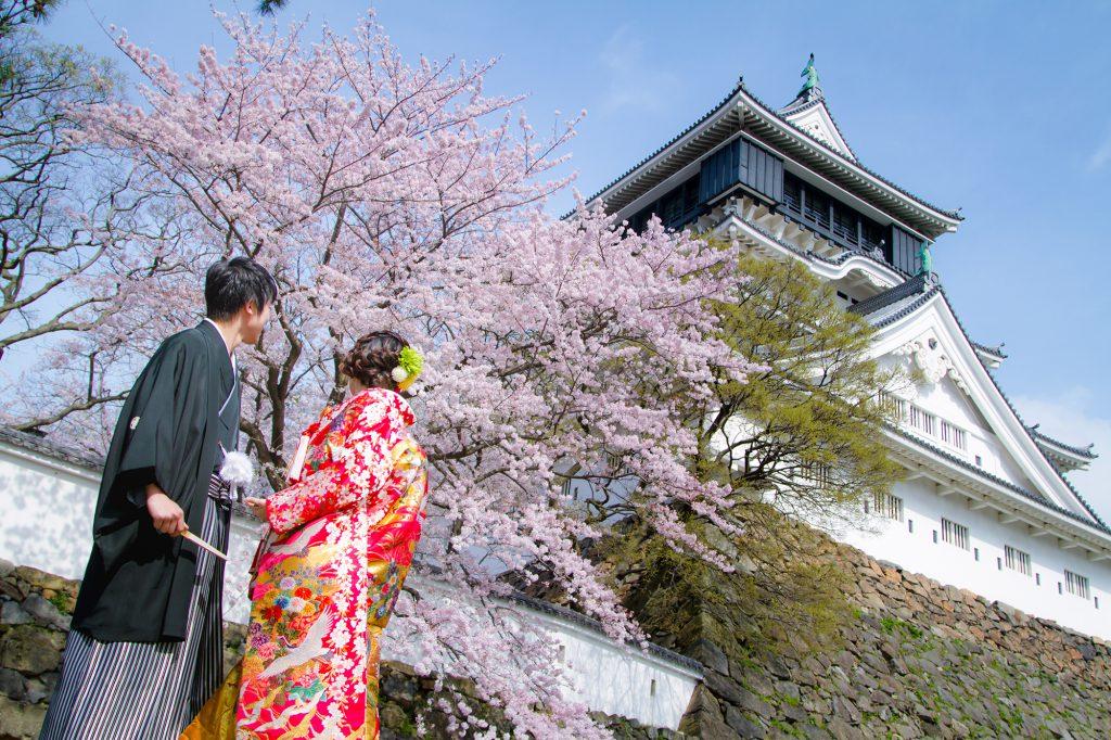 まさに日本の美! 桜×天守閣の壮大な景観