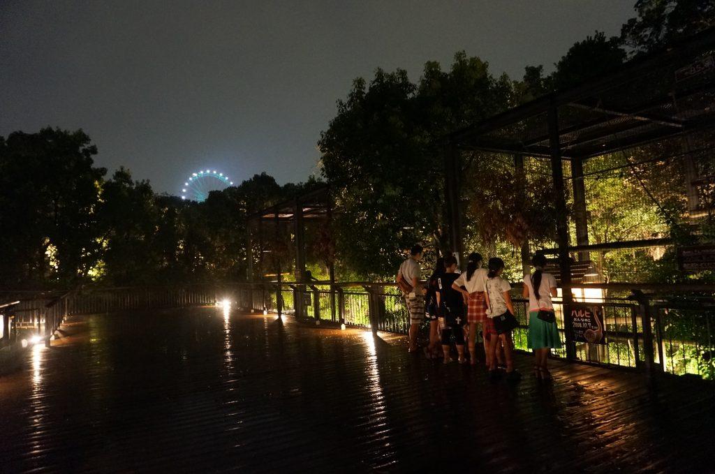 夏限定! ファンタジックな「夜の動物園」…