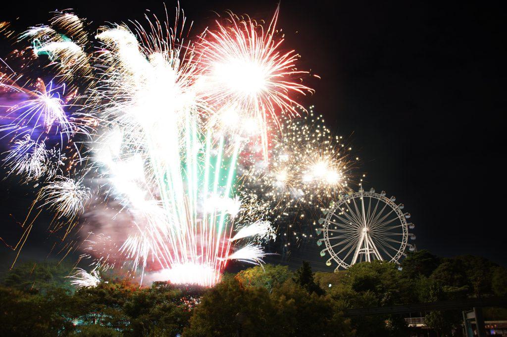 8月の「到津の森公園」は花火祭り!