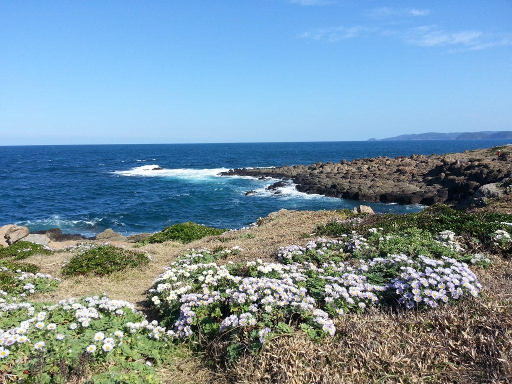 角島最北端に広がるダルマギグ