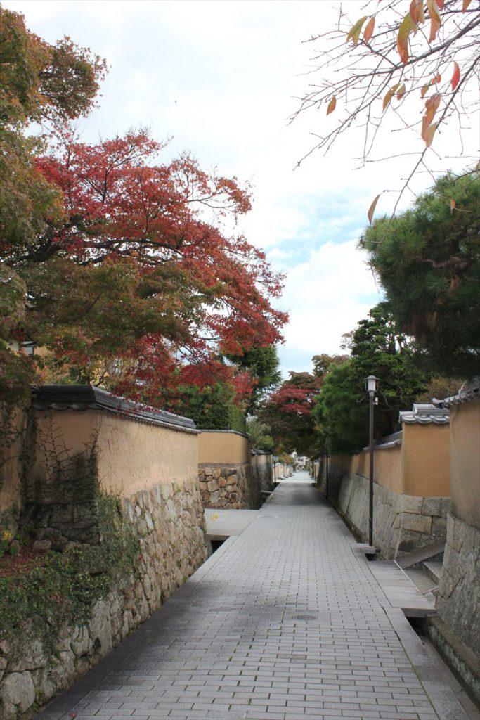 城下町に秋の彩りを添えるモミジ