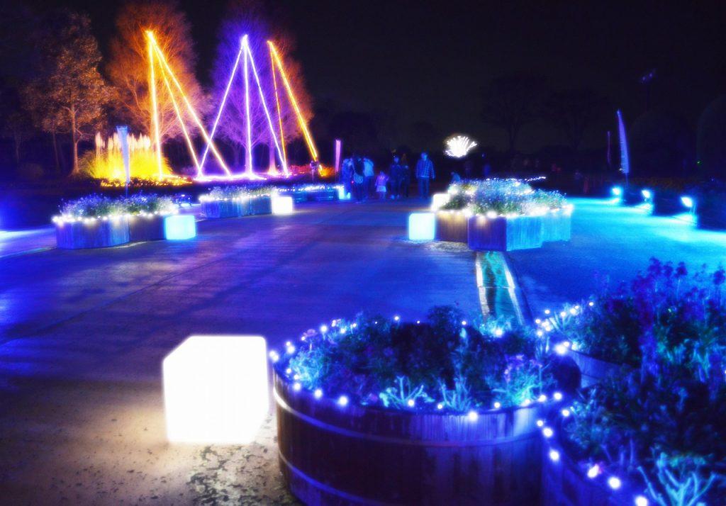 """光と映像で魅せる""""夜のグリーンパーク""""へ"""